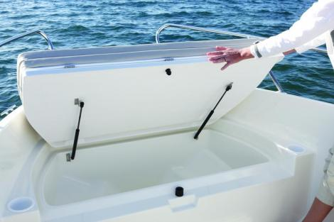 Quicksilver (Brunswick Marine) ACTIV 555 OPEN , Mercury 115