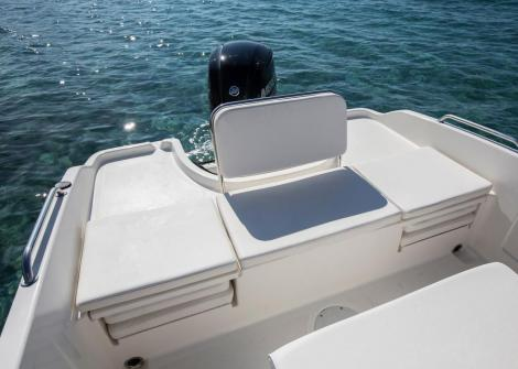 Bayliner ELEMENT CC6