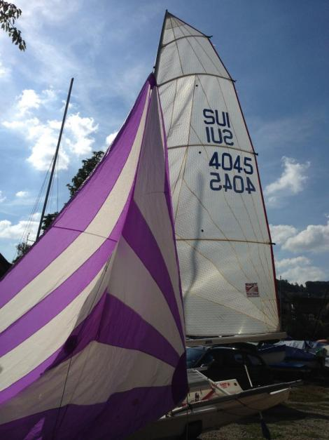 Performance Sailcraft Laser 4000