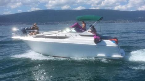 Wellcraft 2700 Martinique