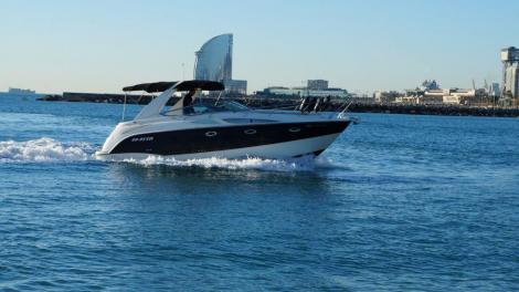 Bayliner 300 Ciera Sunbridge The Force