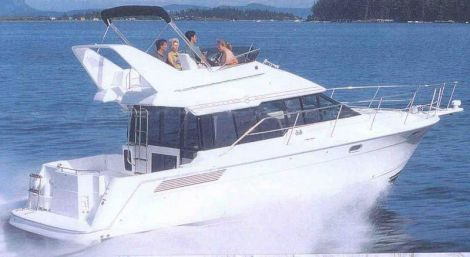 Bayliner 3688 Fly