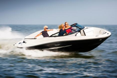 Sea Ray 190 Sp ort Paket