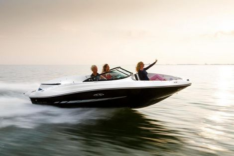 Sea Ray 190 Sport / Nuova