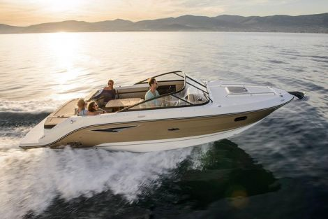 Sea Ray Sun Sport 250 - 60th Limited Edition