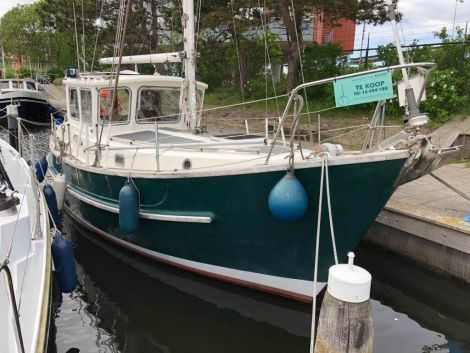 Fisher 31