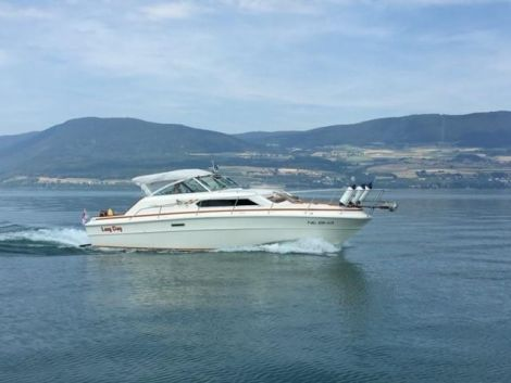 Sea Ray Express Cruiser SRV300