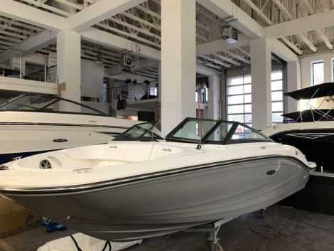 Sea Ray 190 SPX 2019 Modell sofort LIEF.