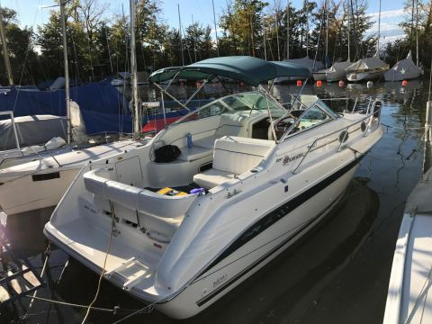 Sea Ray Motorboot SEA RAY 250 DA