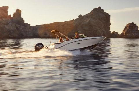 Sea Ray 190 SPX Outboard
