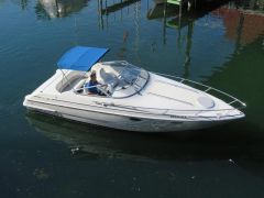 Chris Craft Concept 25 Cuddy Kajütboot