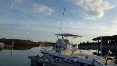 Plastimare Blue Shark 23 Fish