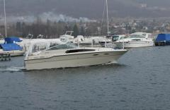 Sea Ray 300 Daycruiser