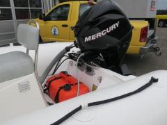 Mercury Ocean Runner 460