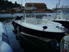 Wellcraft 35 Scarab Yacht a Motore