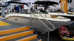 Sea Ray 19 SP X M 2018