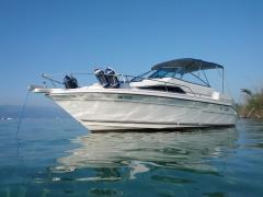Sea Ray 220 DA Sundancer Pilotina