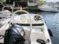 Bayliner Element 160 / E5 mit 60 PS