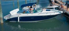 Sea Ray 240 Sse 240 Sportboot