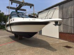 Sea Ray Sundancer 290 Sportboot