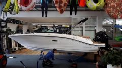 Sea Ray 19 SP OB / Mercury 150 Bowrider-vene