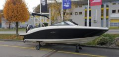 Sea Ray SPX 190 Outboard Sportboot
