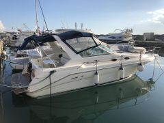 Sea Ray 290 Sundacer