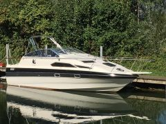 Bayliner 2459 Trophy