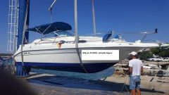 Sea Ray 250 DA Sundancer Duoprop Daycruiser
