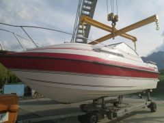 Bateau Thompson Daytona 250 Kabinenboot