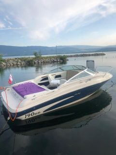Sea Ray 190 CC Signature