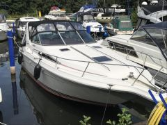 Sea Ray 280/290 DA Motoryacht