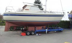 LM Boats 32