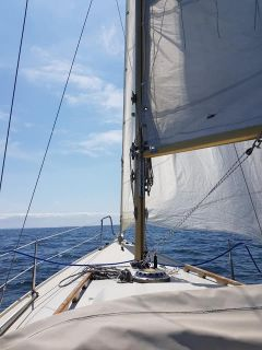 Marieholm IF-Boot