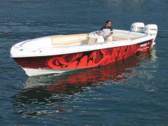 Ocean Master (US) 27' Runabout