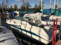 Sea Ray Motorboot SEA RAY 250 DA Kajuuttavene