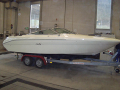 Sea Ray SR 220 Sportboot