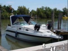 Sea Ray 250 Sundancer Yacht a Motore