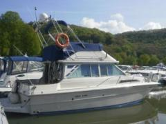 Sea Ray 36 Sedan Fly mit Bug- und Heckstrahlrude Flybridge Yacht