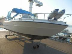 Sea Ray 220 Daycruiser