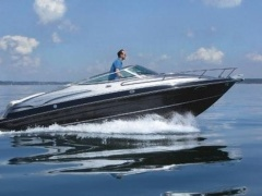 Viper 243 mit LP am Bodensee Yacht a Motore