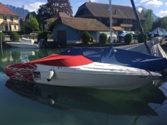 Wellcraft Scarab 26 Offshoreboot