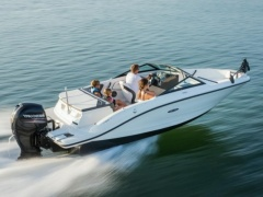Sea Ray 19 SP OB / Evinrude 150 HO Bowrider