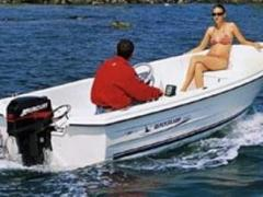 Quicksilver 440 Fish Tender