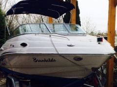 Chaparral 215 SSI mit Trailer, Iate a motor