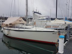 Dufour 39 Frers Segelyacht