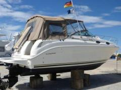 Sea Ray 260 Sundancer Sportboot