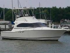 Luhrs 350 tournement Yacht a Motore