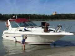 Sea Ray Sundancer 29 Daycruiser
