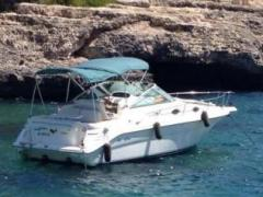 Sea Ray 270 Sundancer Daycruiser